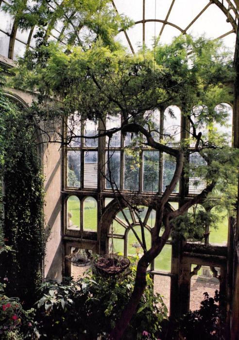 Arched Window, Botanical Garden, Paris