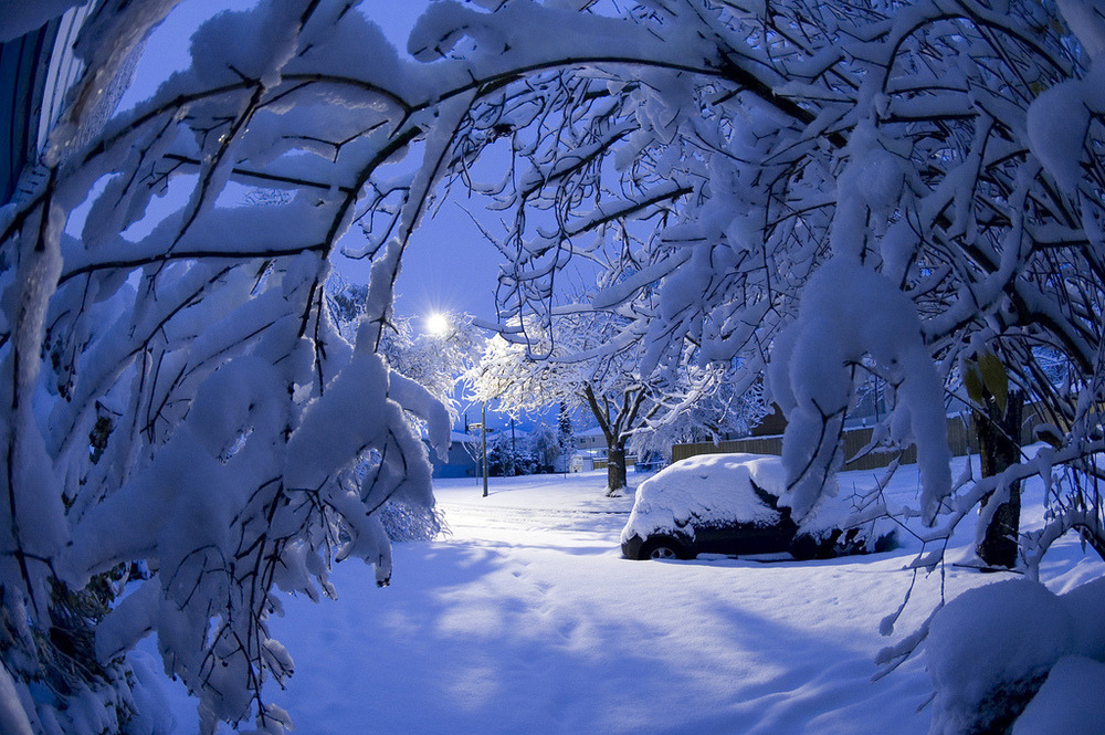 Blue Moon Snow, Vancouver, British Columbia
