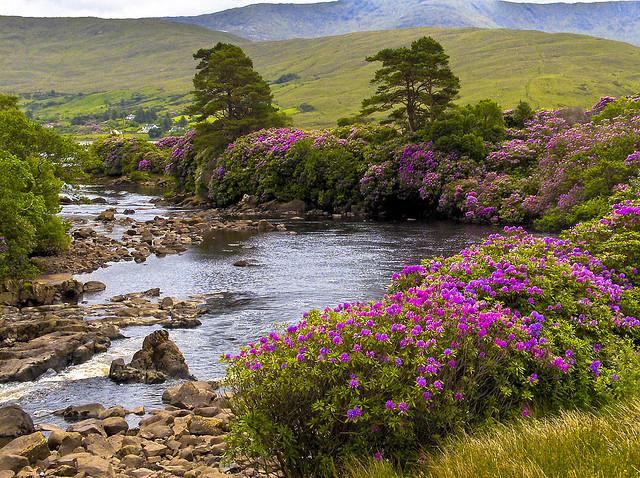 Abhainn Oirimh Erriff river in Ireland.