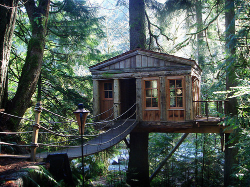 Tree House, Seattle, Washington