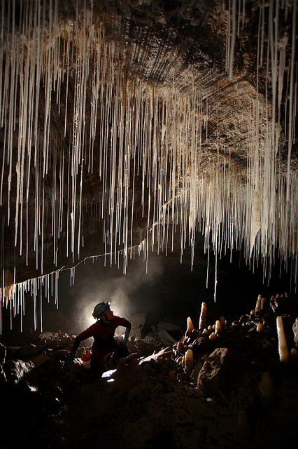 by Robbie Shone on Flickr.Cloud Chamber in Dan yr Ogof cave in south Wales.