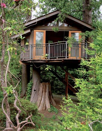 Tree House, Marin, California