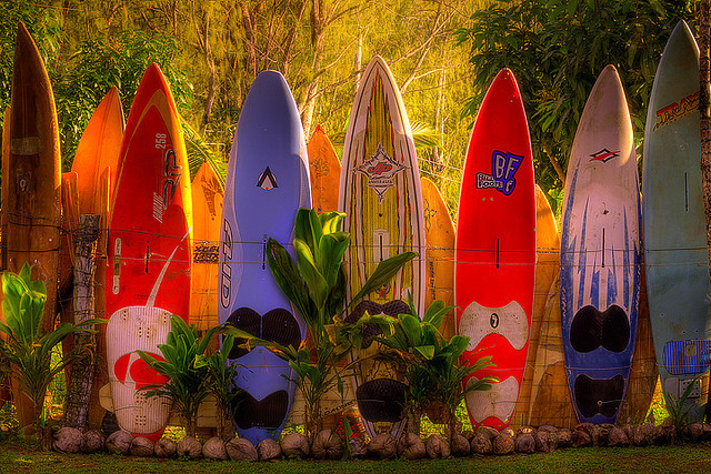 Fence made by surfboards in Maui Island, Hawaii, USA