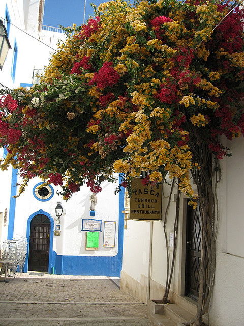 A walk in the old town, Albufeira, Portugal
