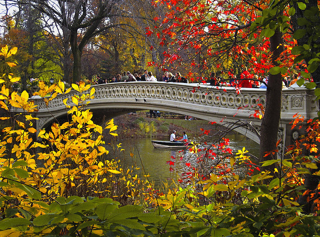 Bow Bridge Fall, Central Park in New York, USA