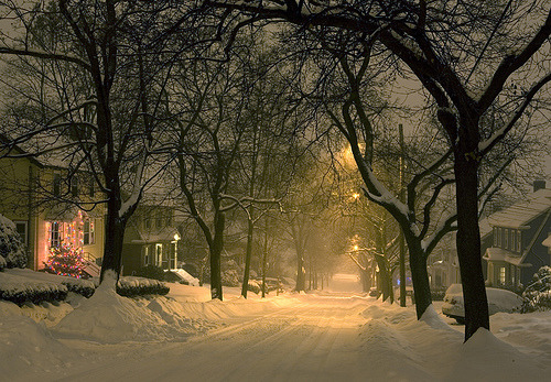 Snowy Night, Watertown, Massachusetts
