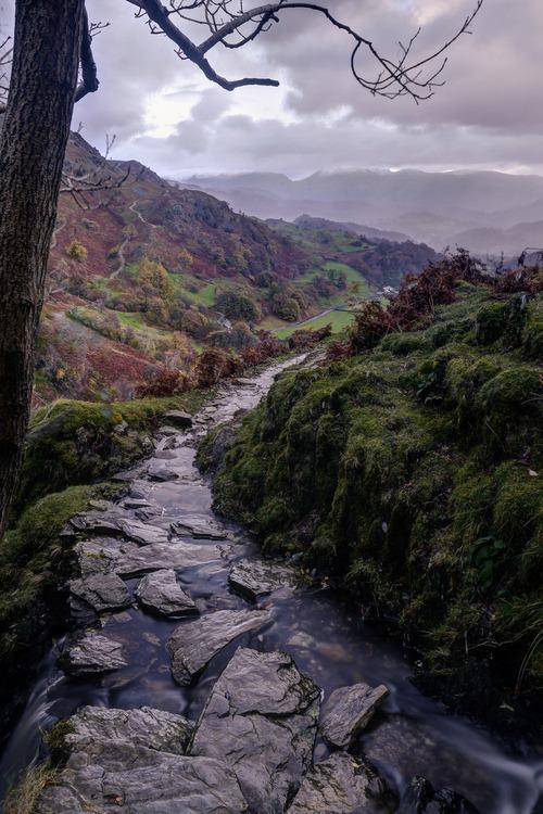 Rocky Stream, Lake District, England