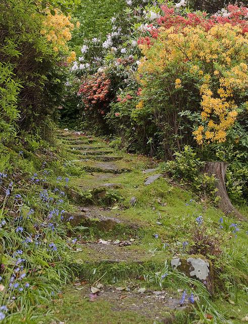 Leonardslee Gardens in West Sussex, England