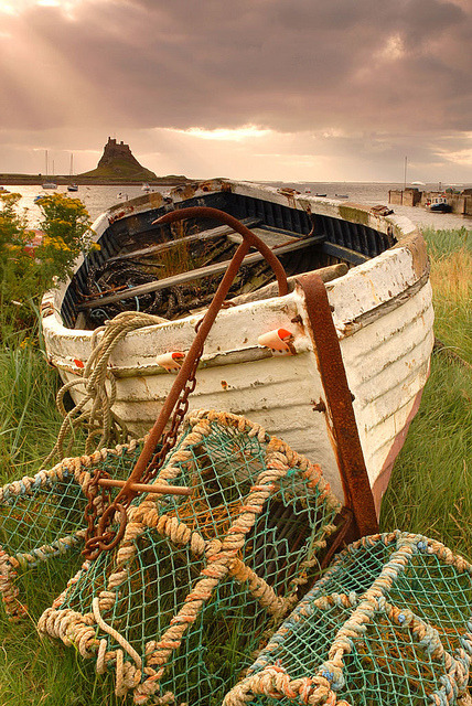 Lindisfarne Castle in the distance, Northumberland, England