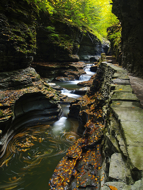 Watkins Glen State Park in New York, USA