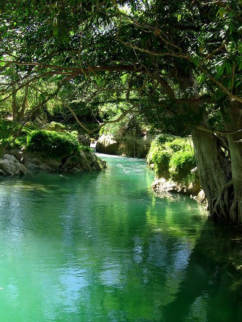 Emerald river in Huasteca Potosina, Mexico