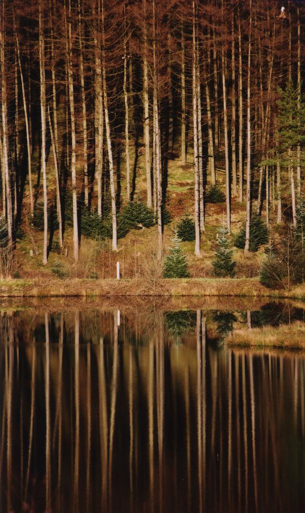 Ceredigion County, Wales