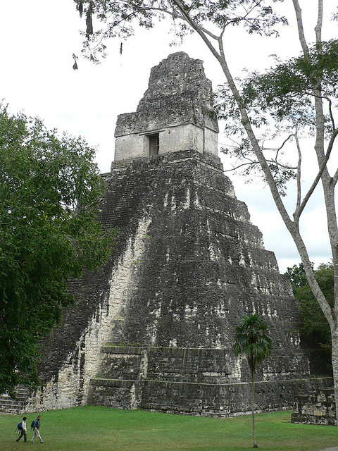 The mayan pyramids of Tikal / Guatemala