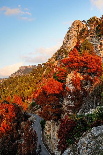 Colors of fire, Mallorca Island / Spain